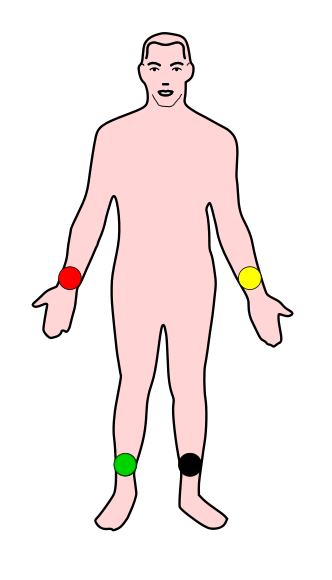 cuerpo conexion-2