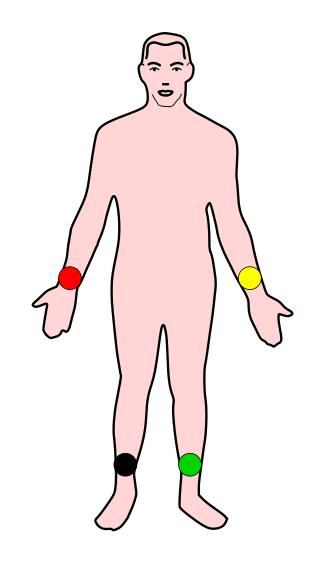 cuerpo conexion