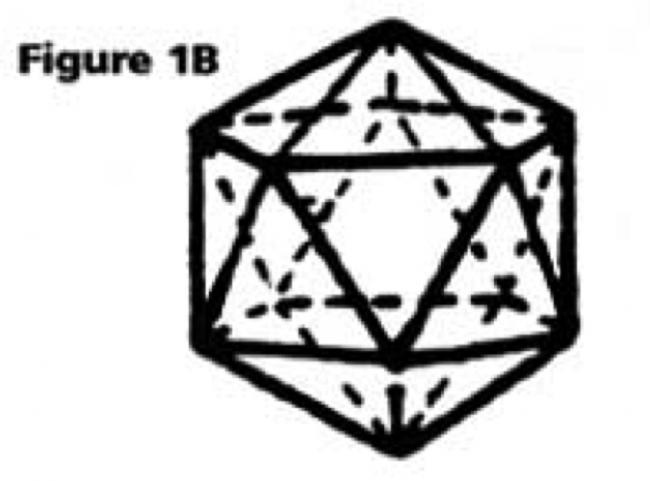 figura1b